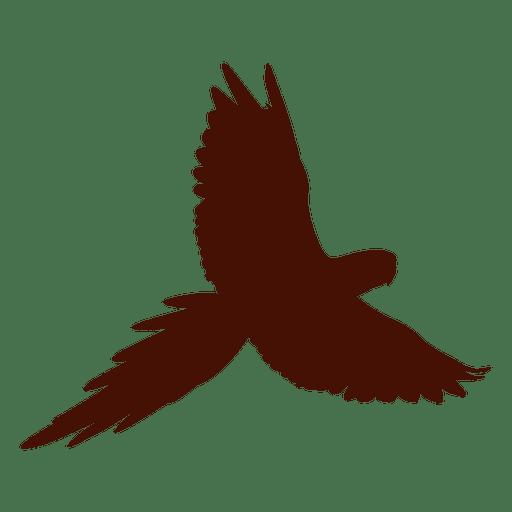 Silueta de pájaro mascota volando