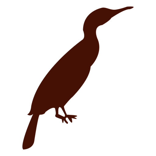 Zoo bird silhouette Transparent PNG