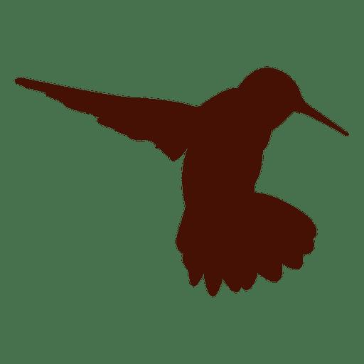 Pet hummingbird silhouette