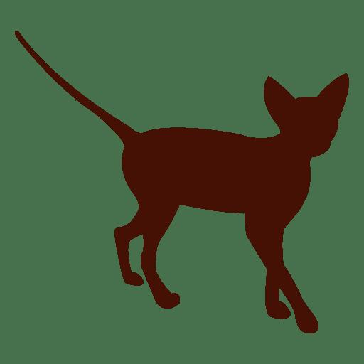 Mascota de gato gatito silueta