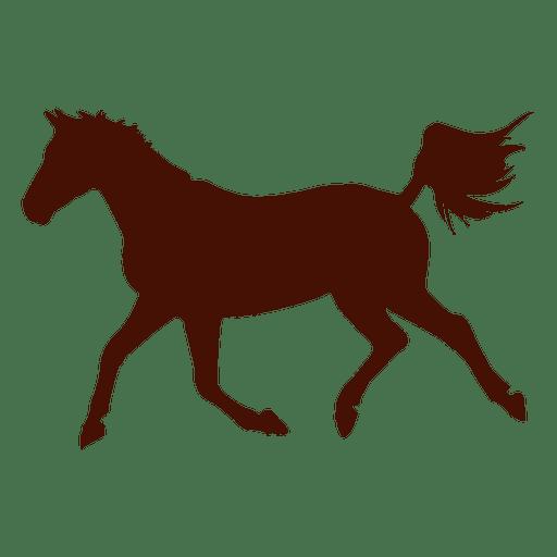Silhouette horse famr