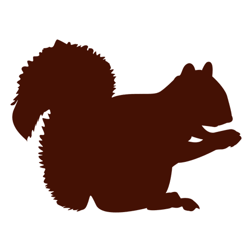Squirrel eating silhouette