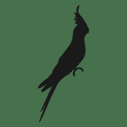 Cockatiel silhouette