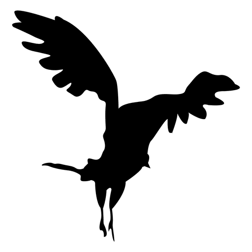 Eagle Flying Transparent PNG