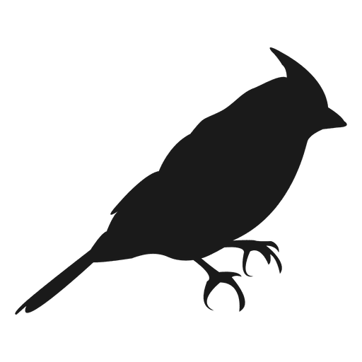 Small bird silhouette - Transparent PNG & SVG vector