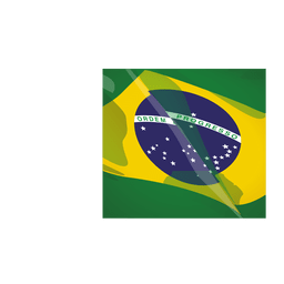 Brazil flag cartoon