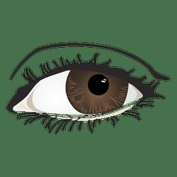 Olho de mulher marrom