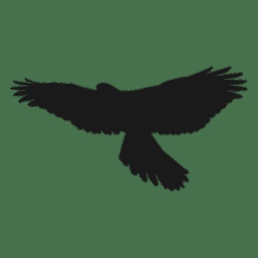 Silueta de águila Transparent PNG