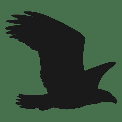 Silueta de halcon Transparent PNG