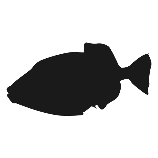 Fish silhouette icon Transparent PNG