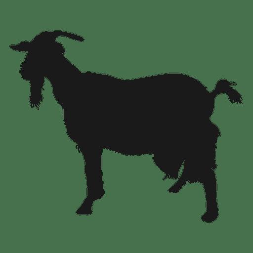 Silueta de cabra barbuda