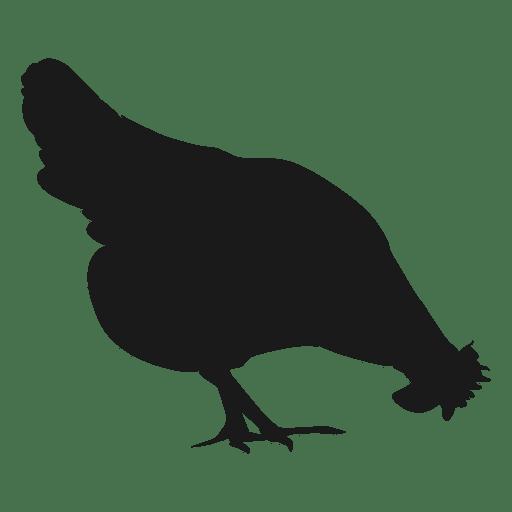 Silueta de gallina 1