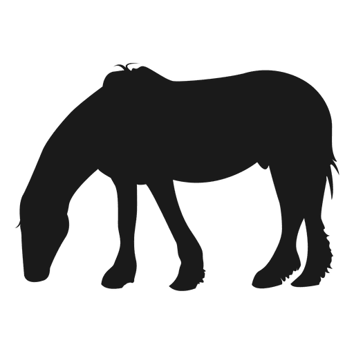 Horse eating grass Transparent PNG