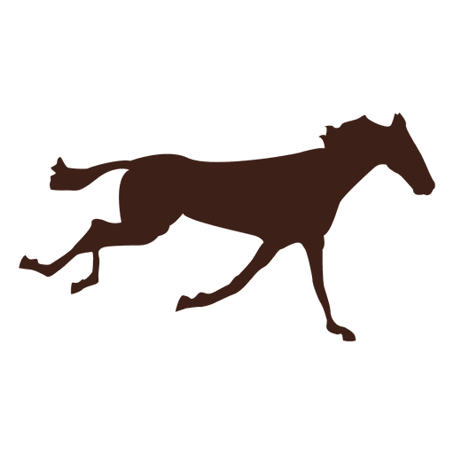 Horse galloping motion sequence Transparent PNG