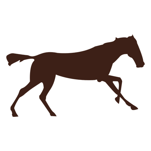 Horse galloping motion sequence 11 Transparent PNG