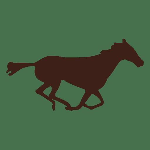 Bewegungsablauf im Pferd 14 Transparent PNG