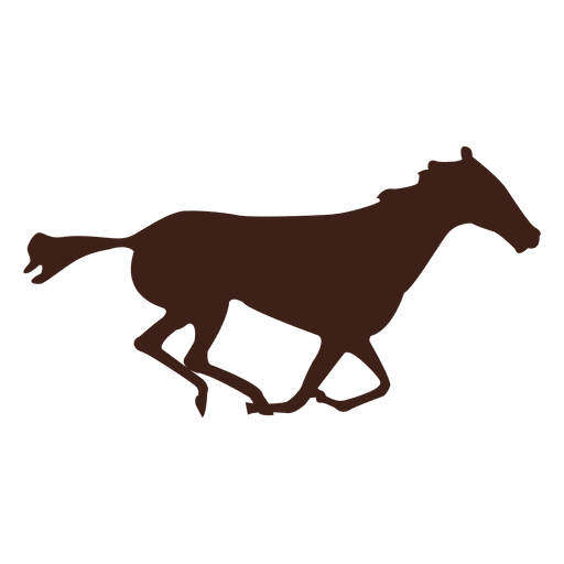 Horse galloping motion sequence 14 Transparent PNG