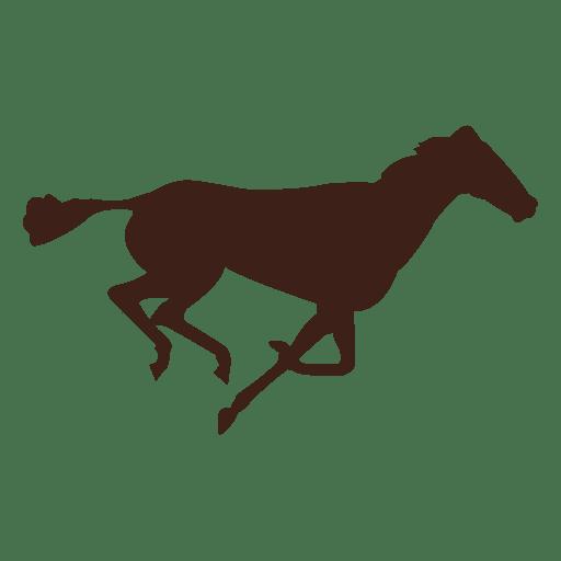 Bewegungsablauf im Pferd 15 Transparent PNG
