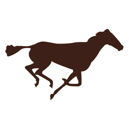 Horse galloping motion sequence 15 Transparent PNG