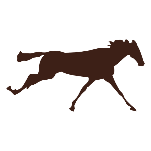 Horse galloping motion sequence 4 Transparent PNG