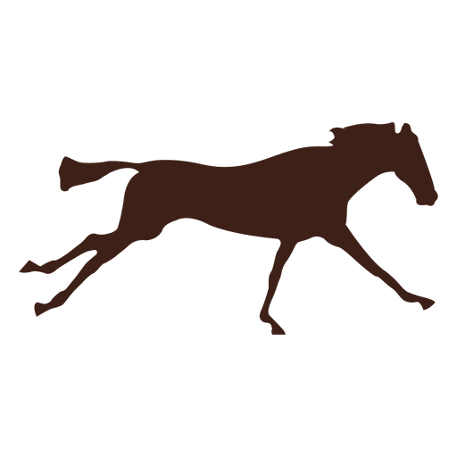 Horse galloping motion sequence 5 Transparent PNG