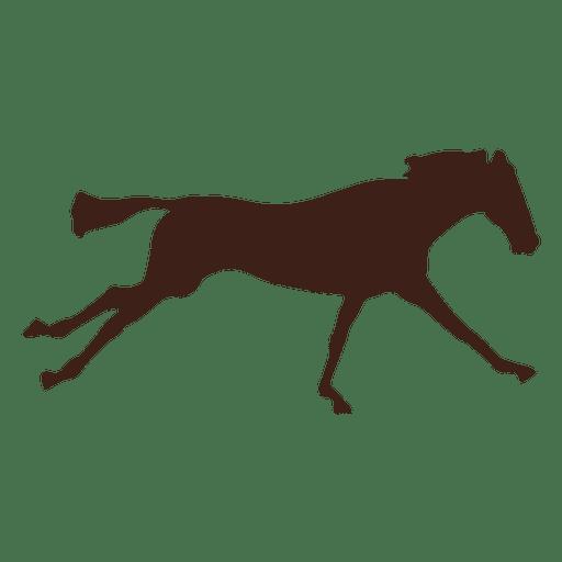 Seqüência de movimento galopante de cavalo 5 Transparent PNG