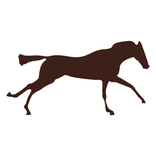 Horse galloping motion sequence 6 Transparent PNG
