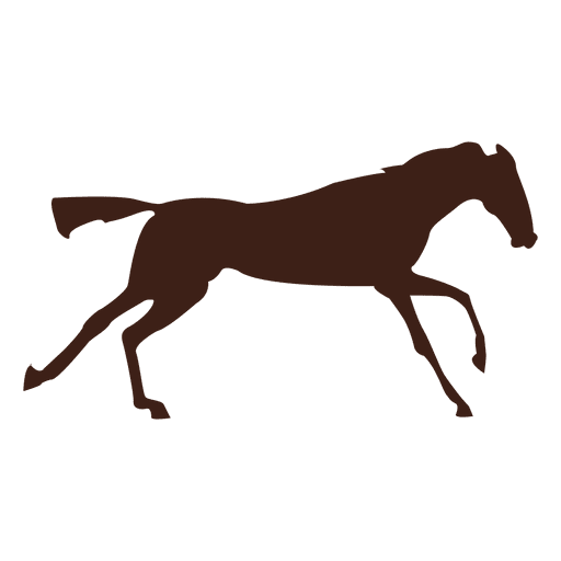 Horse galloping motion sequence 7 Transparent PNG