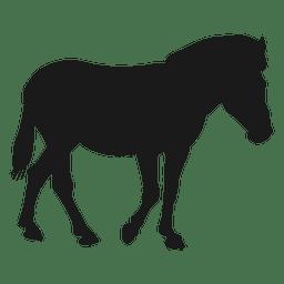 Silhueta de cavalo