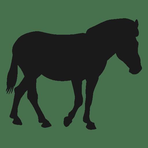 Pferdeschattenbild Transparent PNG