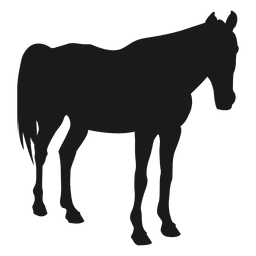 Horse sleeping silhouette