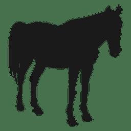 Pferd schlafen Silhouette
