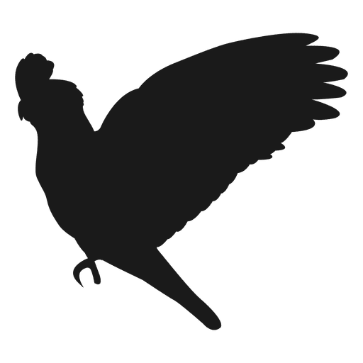 Papagei-Silhouette Transparent PNG