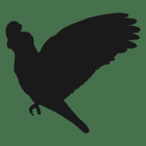 Parrot silhouette Transparent PNG