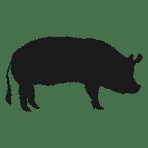 Pig silhouette 1