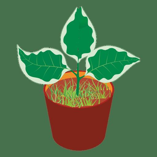 Plant tub Transparent PNG