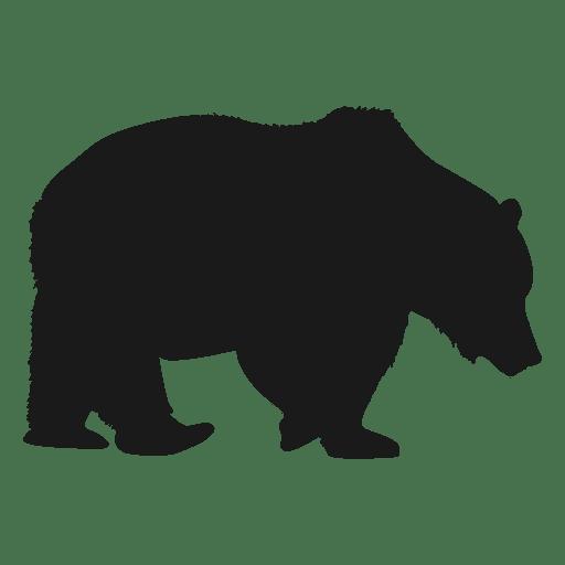 Urso Polar Baixar Png Svg Transparente