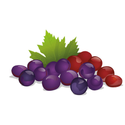 Realistic grapes