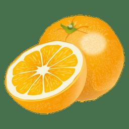 Realistic orange