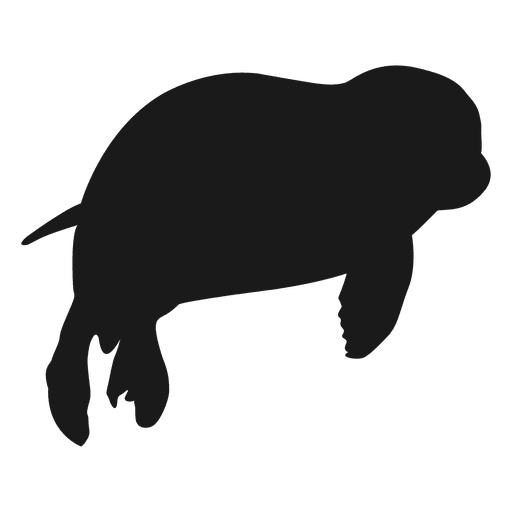 Siegel Silhouette Transparent PNG