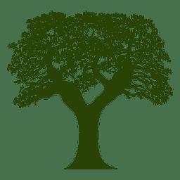 Silhueta de árvore 18