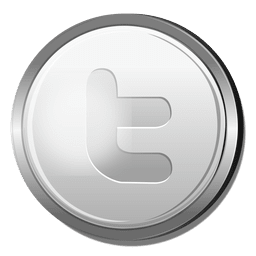 Twitter silver icon