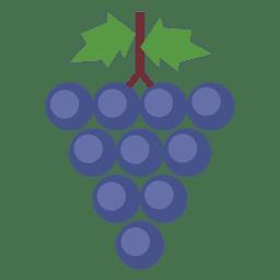 Conjunto de folhas de uva