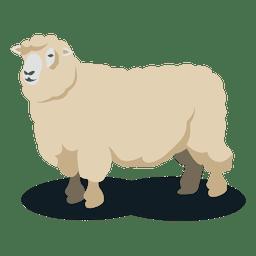 Lana de oveja animal