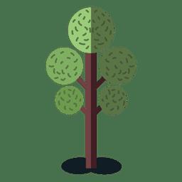 Árbol verde de la naturaleza