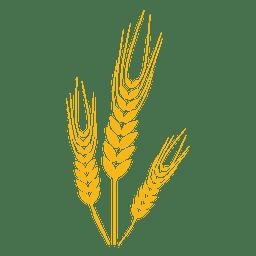 Planta del alimento del trigo