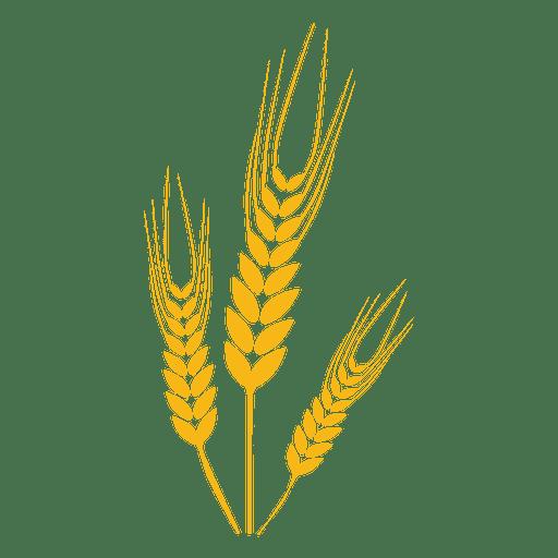 Planta de alimento de trigo Transparent PNG