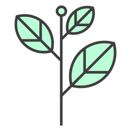 Hojas verdes tallo planta