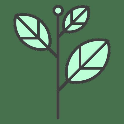 Green leaves stem  Plant  Transparent PNG