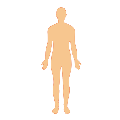 Human body man